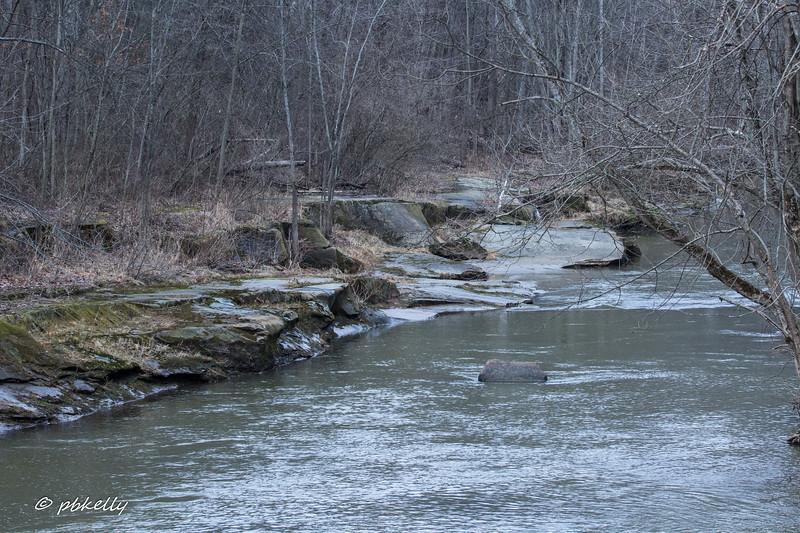 Black River 022317-2.jpg