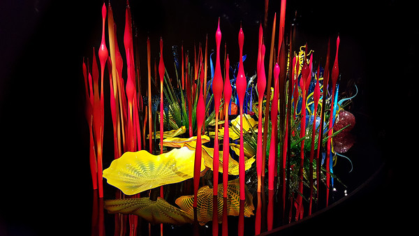 Chihuly Garden& Glass