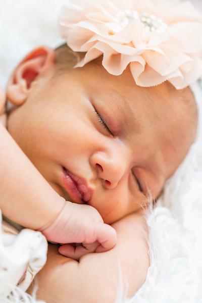 Newborn {Portraits}