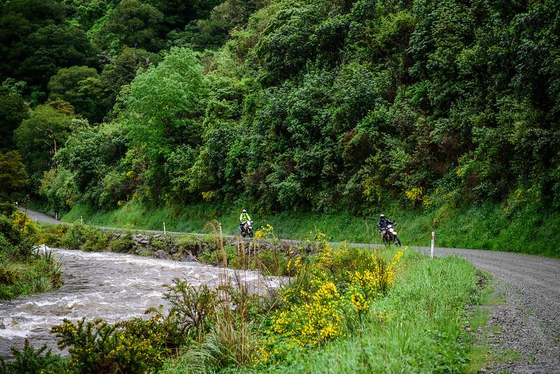 2019 KTM New Zealand Adventure Rallye (91).jpg