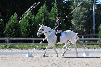 2010-10-23 USEA Horse Trial
