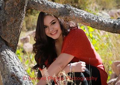 Fernandez Senior