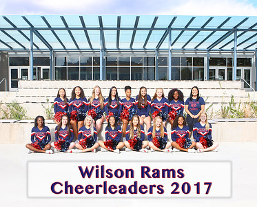 Cheer Team Pic 2017