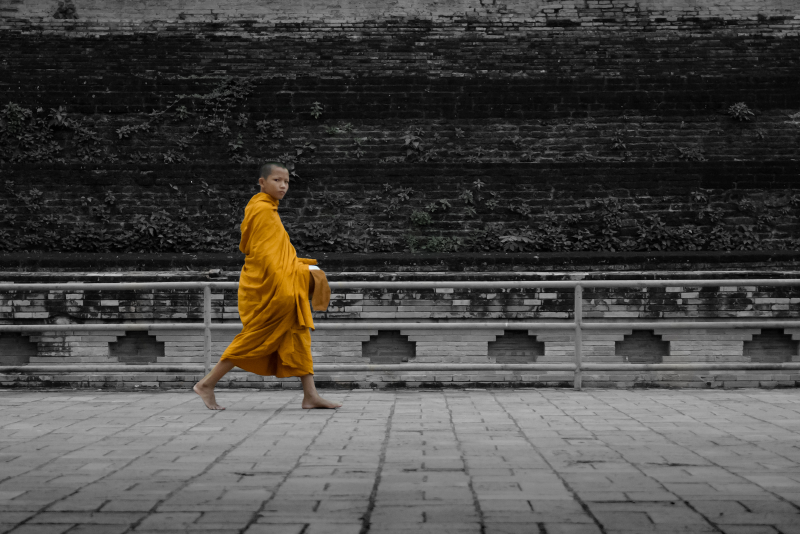 Monk at Wat Chedi Luang