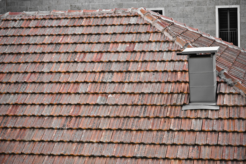 Mamilla's roof