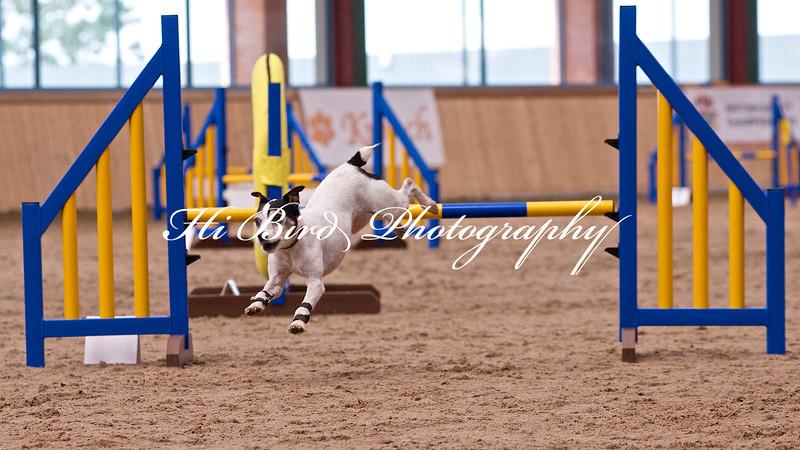 small jump class 1086.jpg
