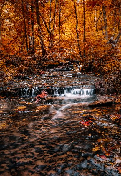 Fall Hollow Stream