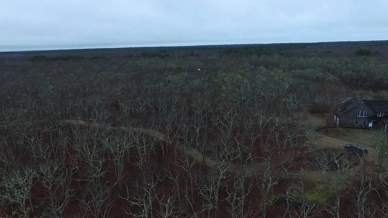 Initial Video
