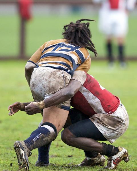 rugby-stanford-davis  9927.jpg
