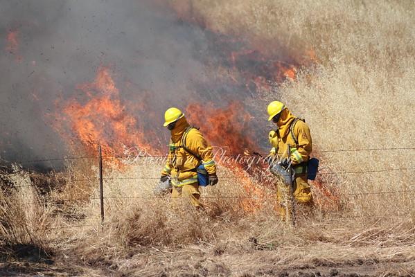 Controlled Land Burn