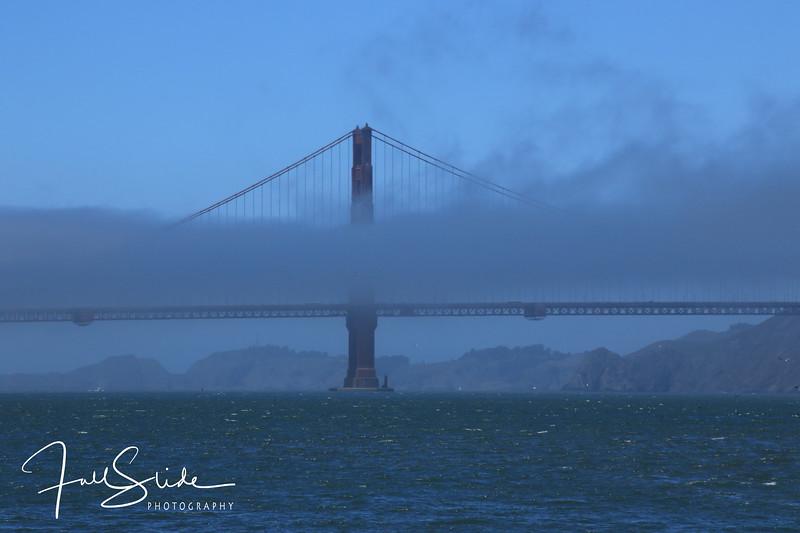 San Francisco 2018 -48.jpg