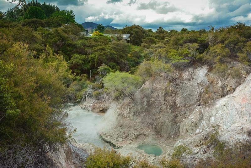 Rotorua-10.jpg