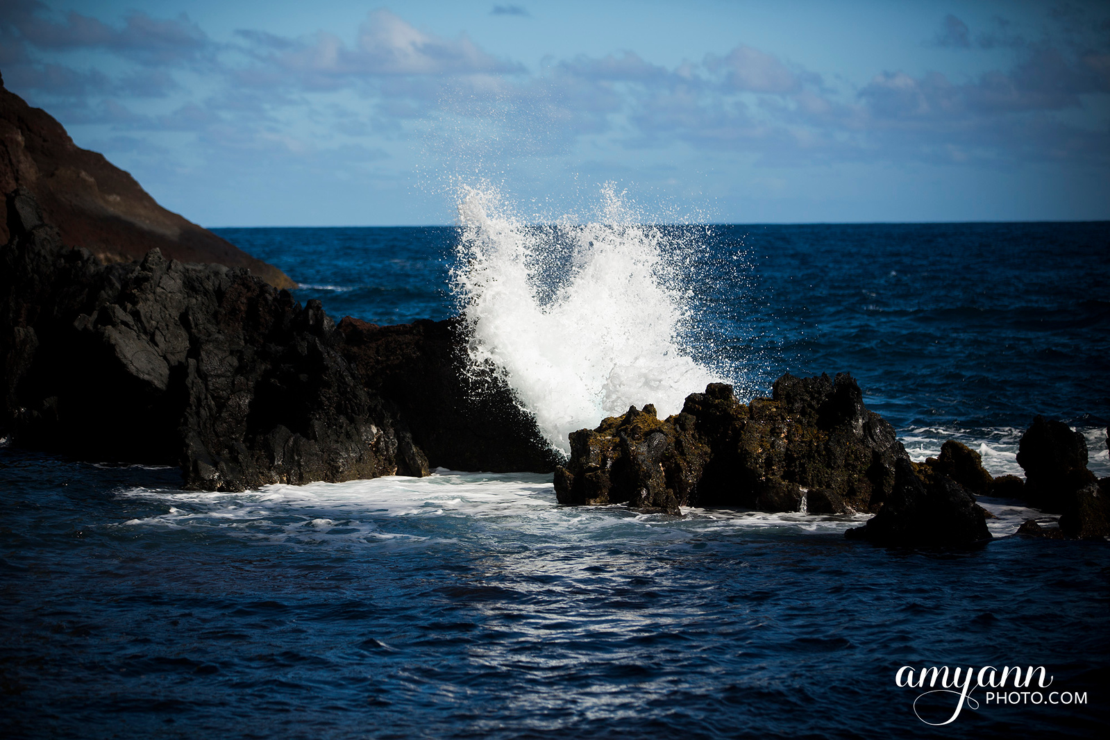 hawaii_amyannphoto_40
