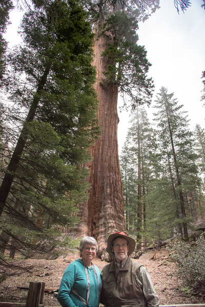 Yosemite - Kings Canyon - Sequoia 2017