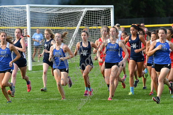Wyomissing vs Fleetwood vs Oley High School Cross Country 2017 - 2018