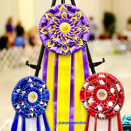 Best of Breed Competition - Final Round