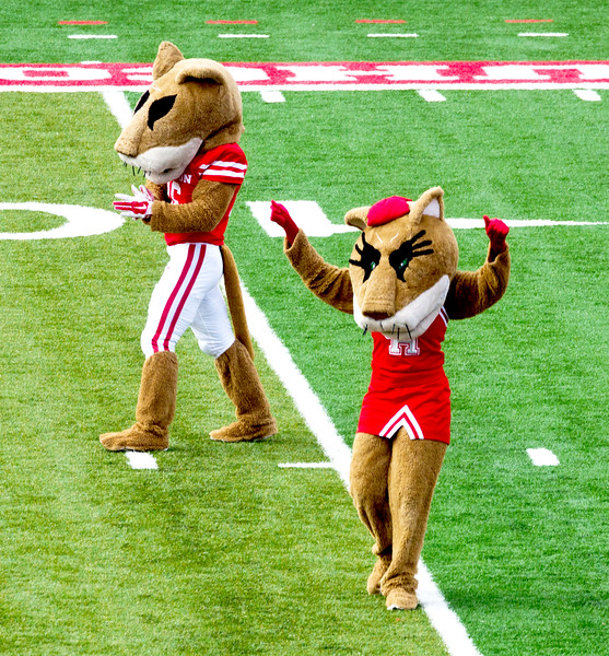 Shasta and Sasha announce the UH Band's arrival.