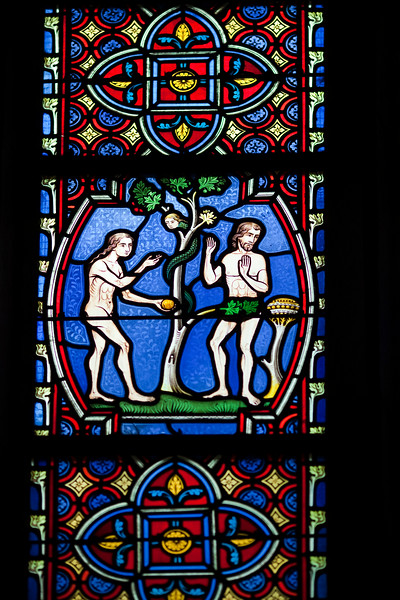 Adam and Eve eating the apple, stained glass window, Saint Pierre Cathedral, Vannes, department of Morbihan, region of Brittany, France