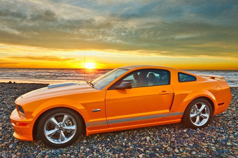 20101230_shelby_HDR_Remix.jpg