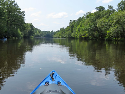 Edisto River with LCP on July 24, 2021