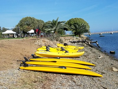Mcnears Shots Delivery SUP and Kayak