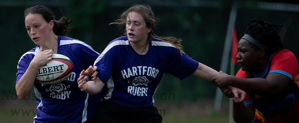 Hartford Roses - July 17, 2021
