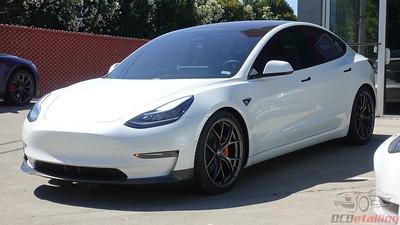 Tesla Model 3 - Pearl White Multi-Coat (8)