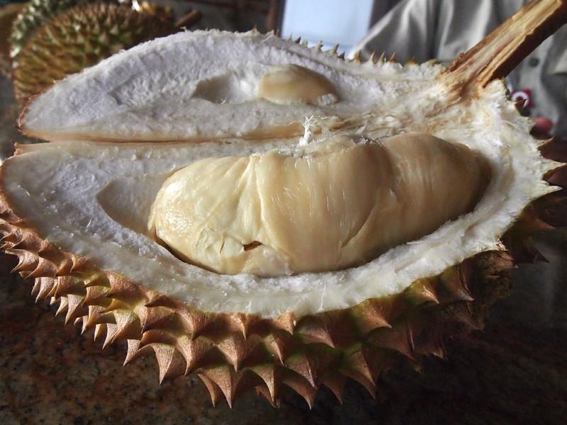 Hawaiian-Durian.jpg