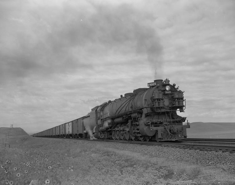 UP_4-12-2_9005-with-train_Archer-Wyo_July-1950_Jim-Ady-photo.jpg