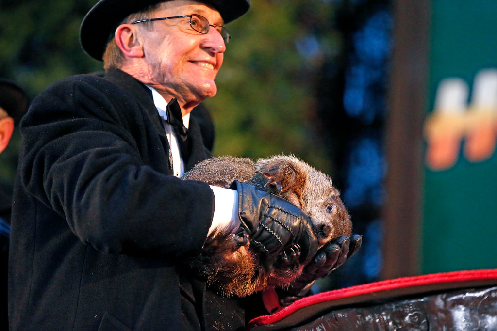 . Punxsutawney Phil, the weather prognosticating groundhog, takes a bite out of the gloved hand of handler Ron Ploucha during the 129th celebration of Groundhog Day on Gobbler\'s Knob in Punxsutawney, Pa. Monday, Feb. 2, 2015. Phil\'s handlers said that the groundhog has forecast six more weeks of winter weather. (AP Photo/Gene J. Puskar)