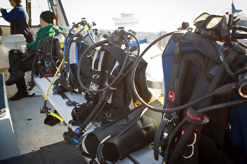 01-05-12_Monterey_Boat_Dive_Roeder_15.jpg