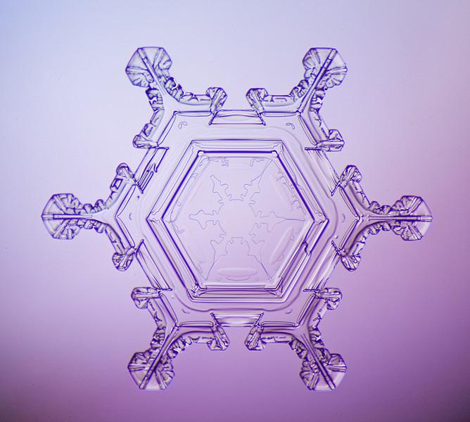 snowflake-0237-Edit.jpg