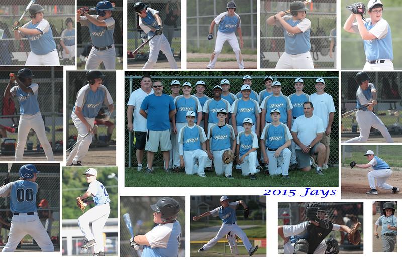 montage 2015 Jays copy.jpg