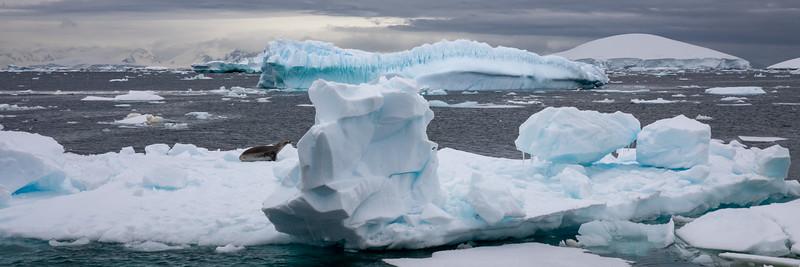2019_01_Antarktis_04182.jpg