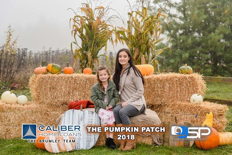 2018 Caliber small w logo
