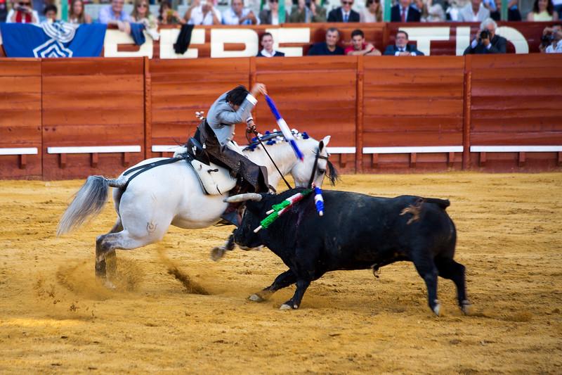 Bullfighting H20.jpg