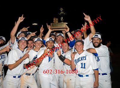 5-19-2015 - AIA D1 Baseball Championship Game - Mesquite vs Liberty