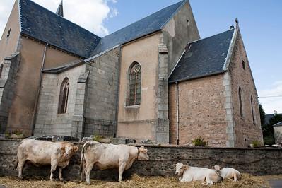 Morvan, Frankrijk