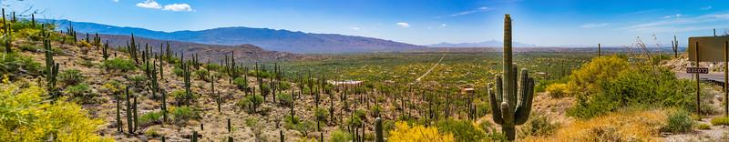 Arizona (AZ)