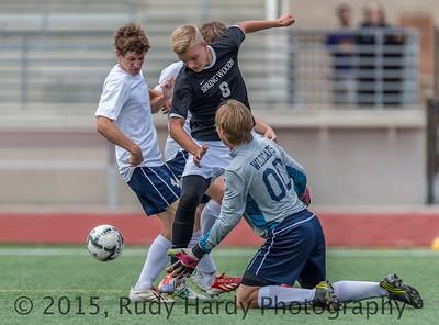 2015 - High School Soccer