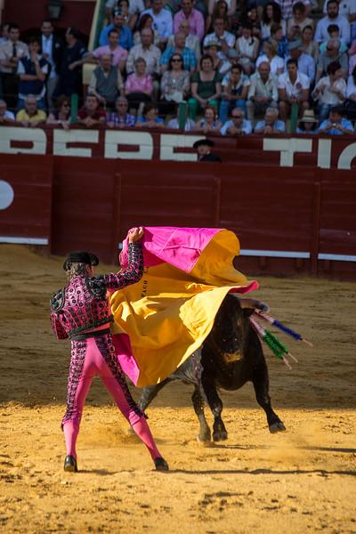 Bullfighting H14.jpg