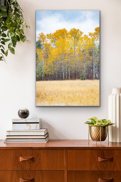 'Fall Glory' Canvas Wrap or Float Mount Metal Print