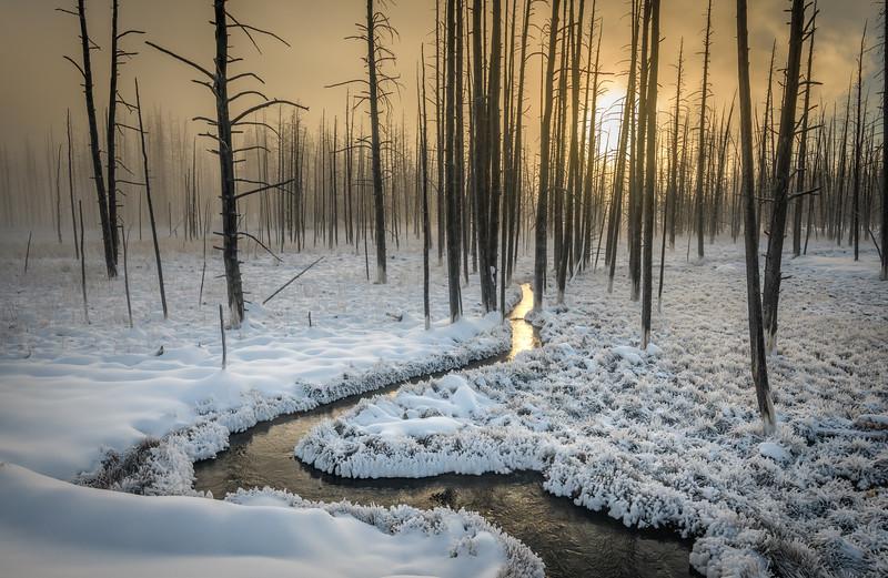 Yellowstone_DR26059.jpg