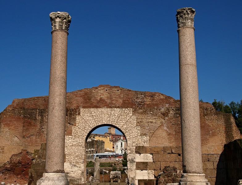 Rome Forum Romanum 30-1-09 (75).jpg