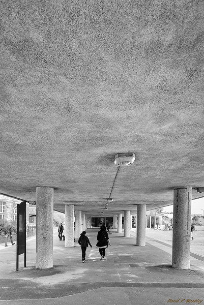 Underneath Walkway