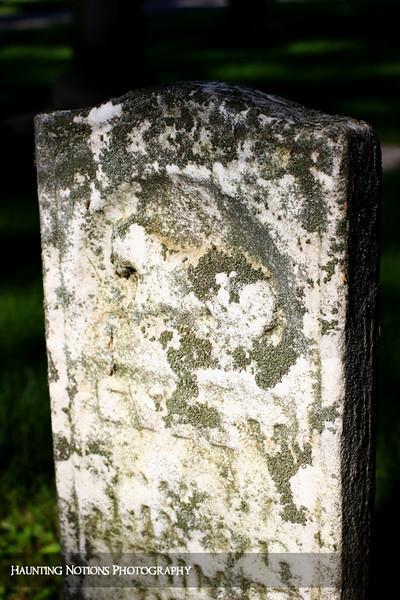Baa Baa (Pilgrim Home Cemetery, Holland MI)