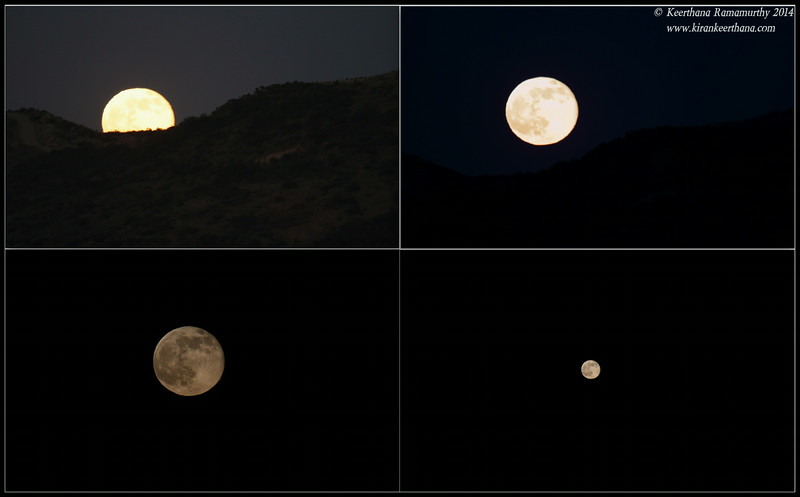 Super Moon rising behind the mountain, Scripps Ranch, San Diego County, California, July 2014