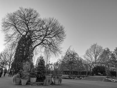 Longwood Gardens with Lisa, 11-28-20 (EM1-III)