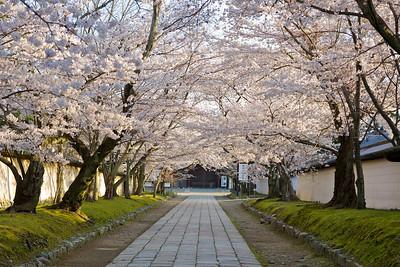 Daigo-ji — 醍醐寺