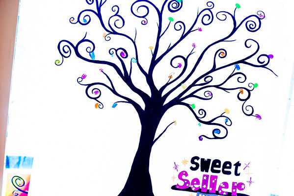 Johnson City Girl Scouts Sweet Seller-bration April 26th, 2015